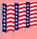 Patriot Flags